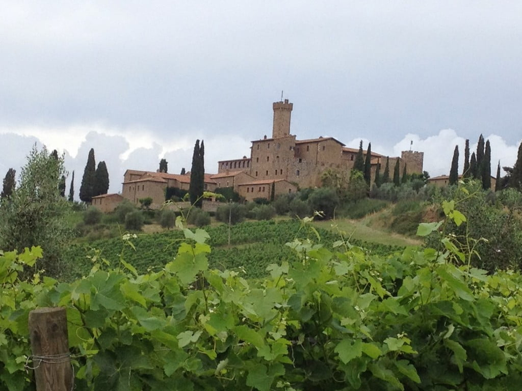 Castello Banfi castle in Montalcino, Tuscany, Italy, viewed from the vineyards