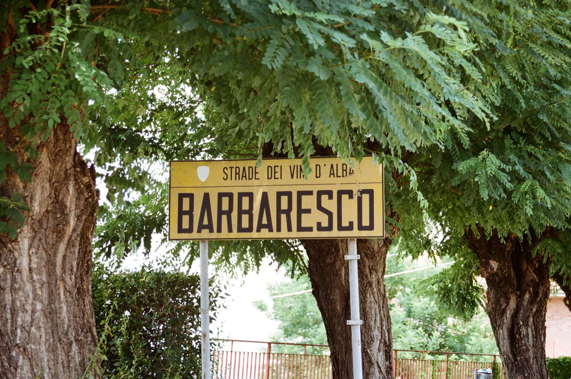 Street sign of Barbaresco