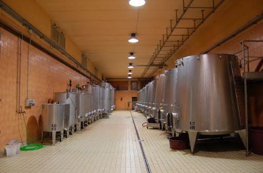 Canonica Cellars