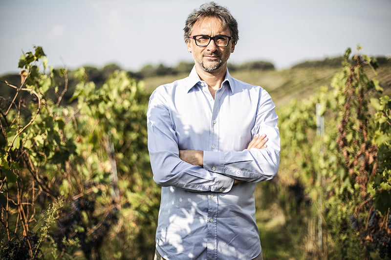 A man standing in vineyards