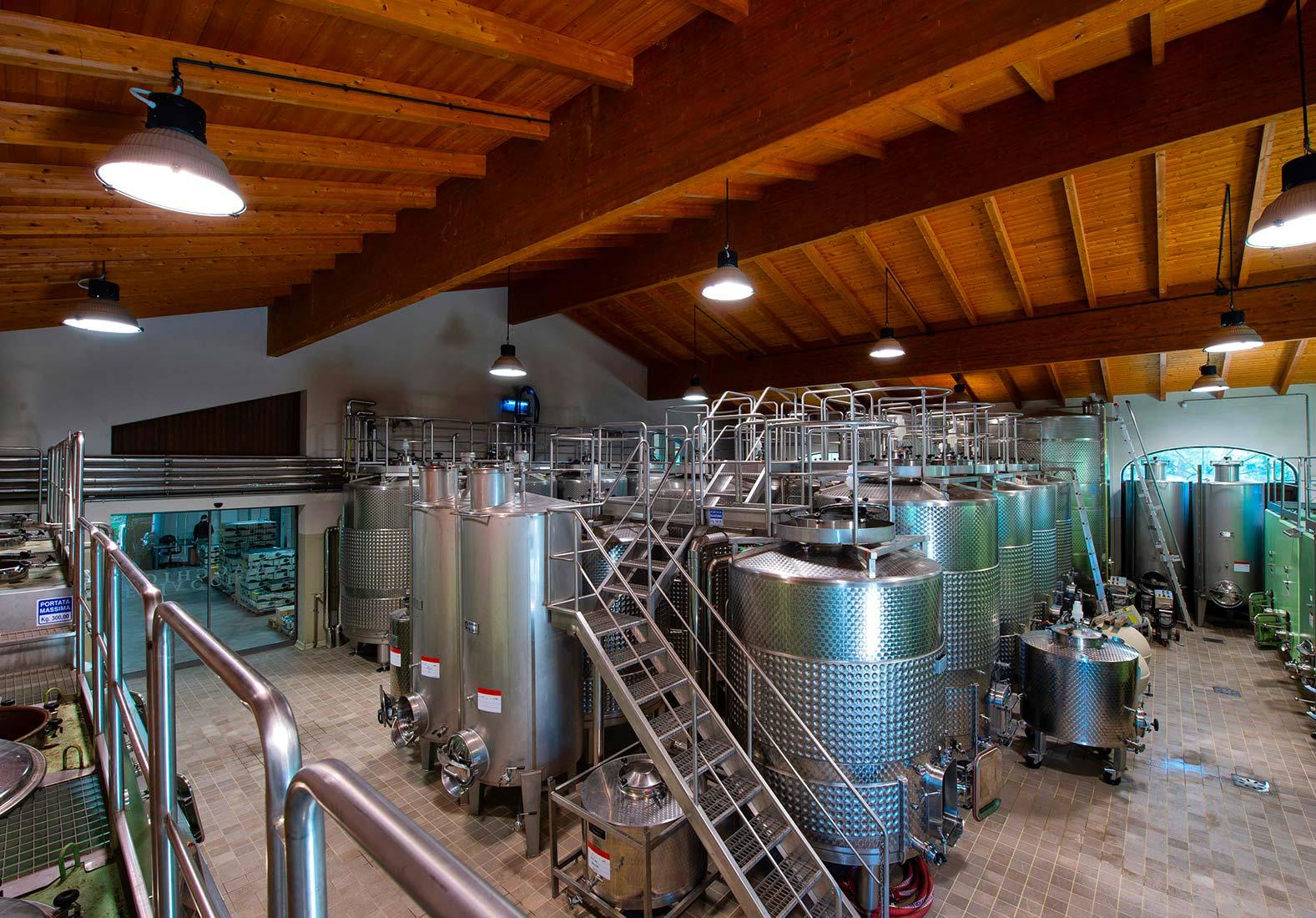 Le Macchiole Wine Cellar