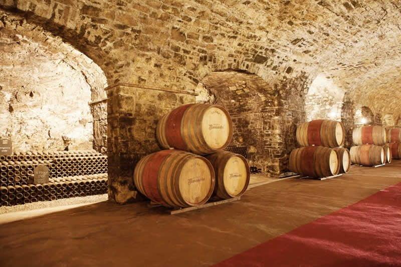 Wine barrels in the wine cellar
