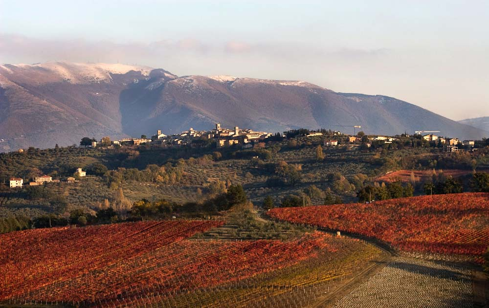 View of Montefalco Umbria