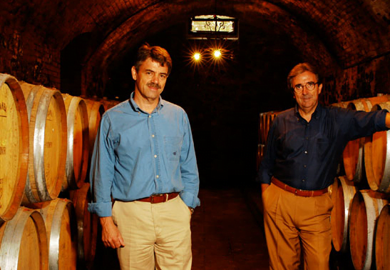 Two men standing in a wine cellar