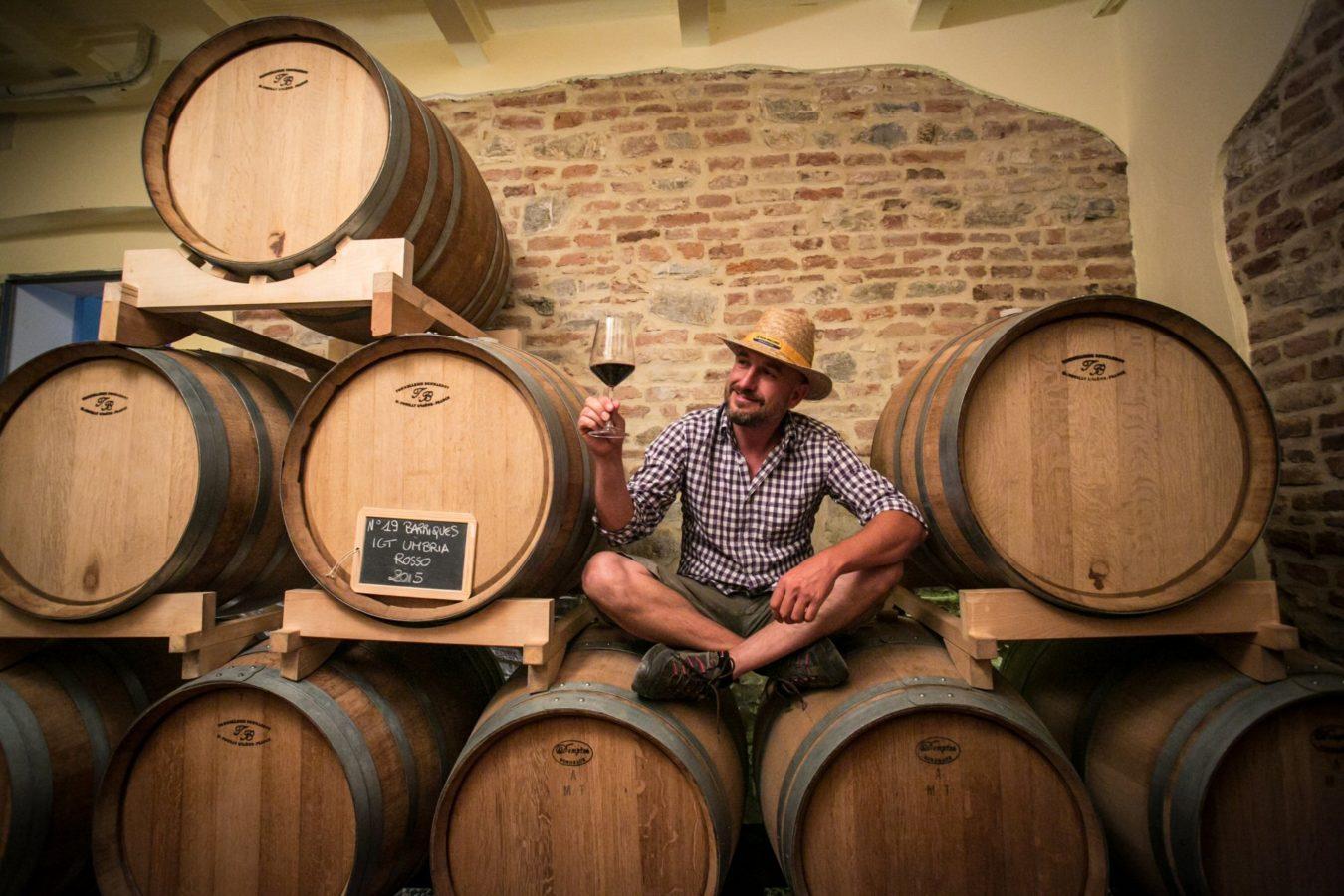 Madrevite wine cellar