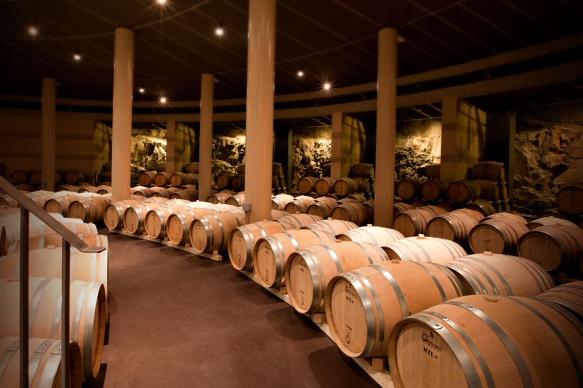 Wine barrels in an underground wine cellar