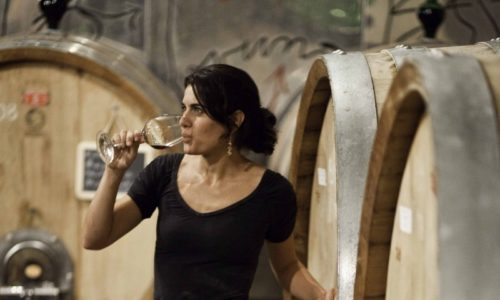 women in wine cellar drinking wine