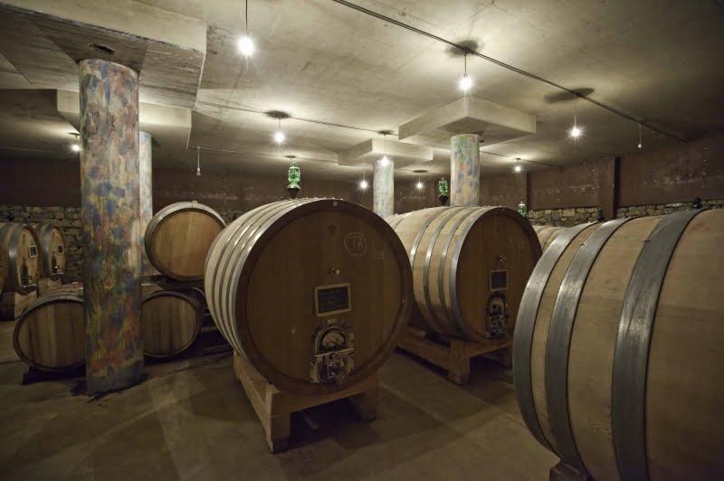 Stella di Campalto wine cellar