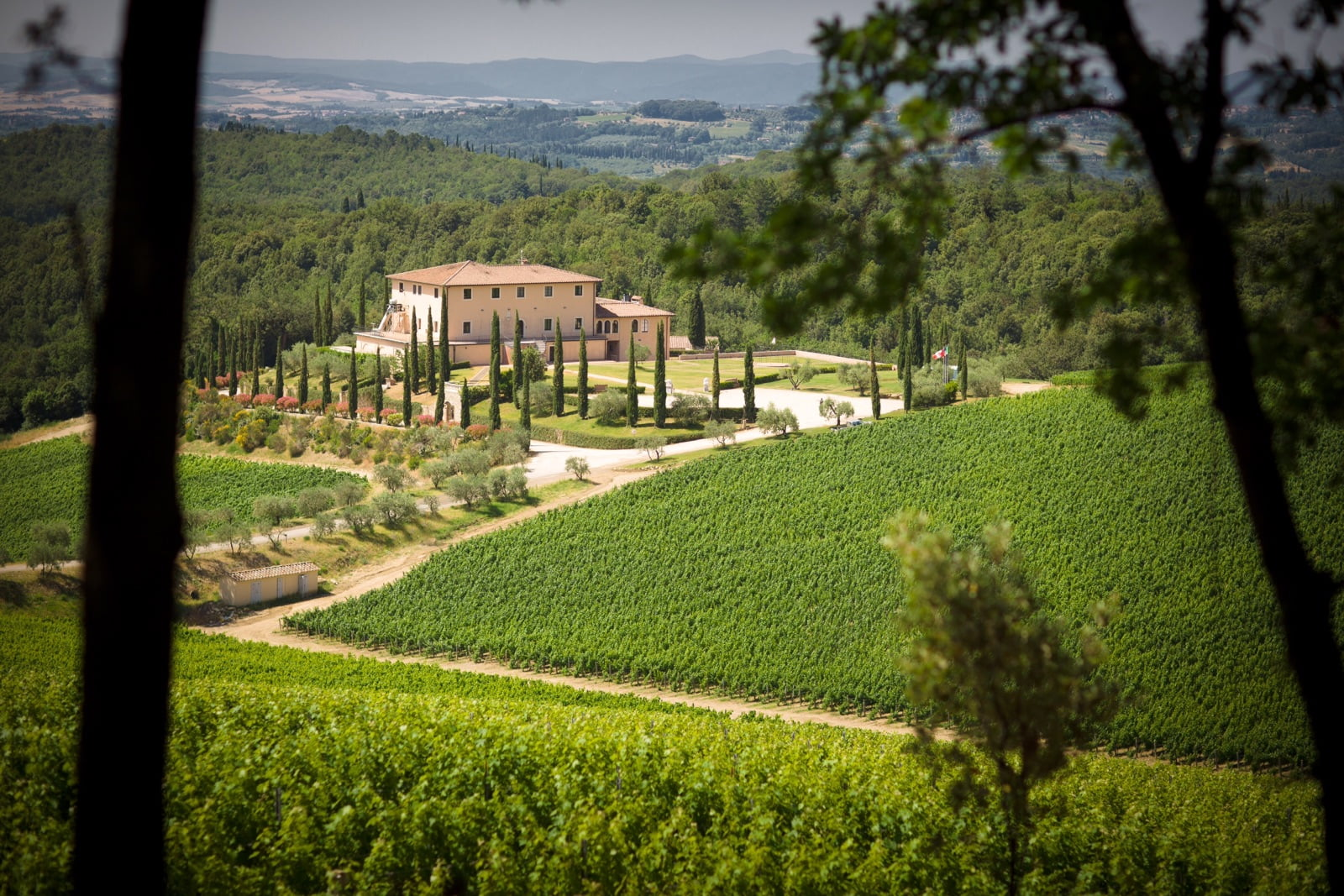 View of villa surrounded by vineyards in Tuscany