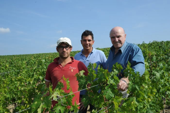 Men standing in a vineyard among vines