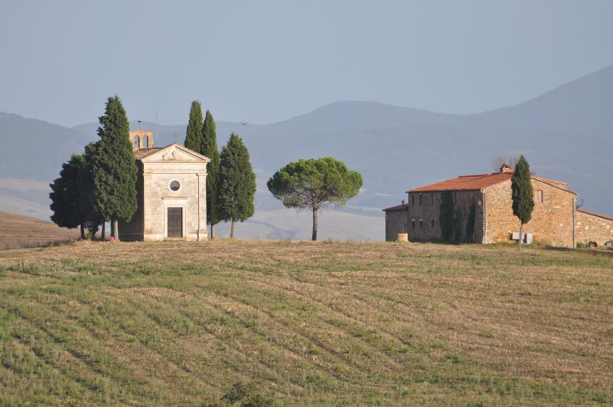 Tuscany and Cypress Trees
