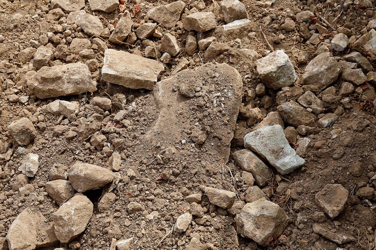 Vermentino Dirt and rocks